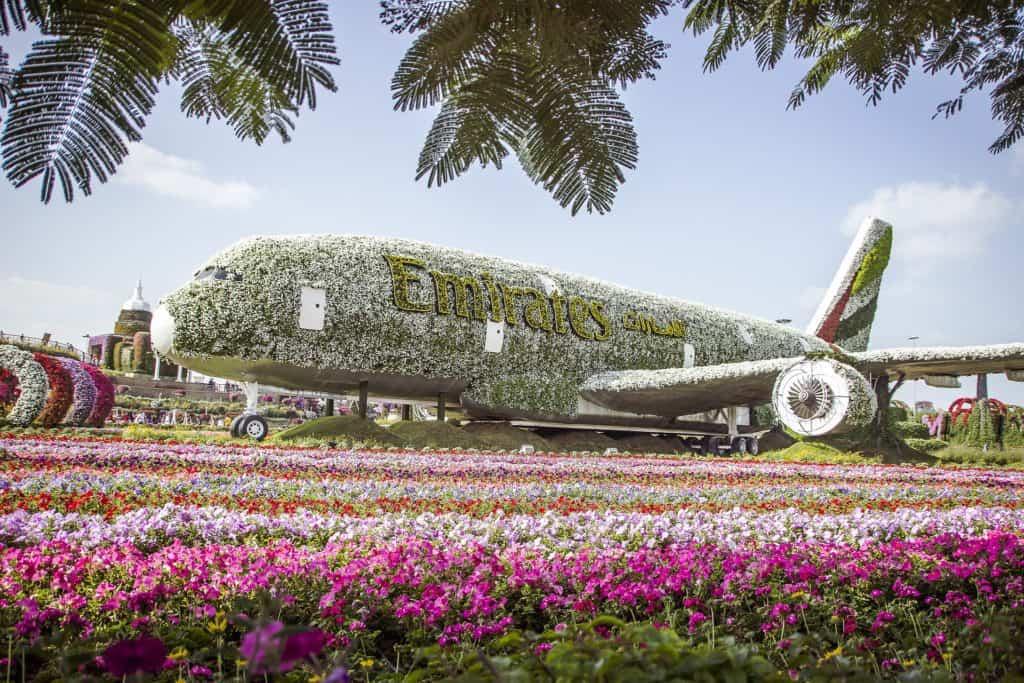 A380 a spousta květin